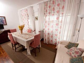 La terrazza su Roma. Penthouse for up to 12 people - Verona Beach vacation rentals