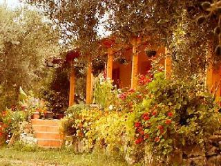 The Olive Farm - sea views- set in 400 olive trees - Kiparissia vacation rentals
