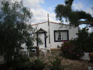 Farm Villa in hills & orange groves.T/2 villa - Silves vacation rentals