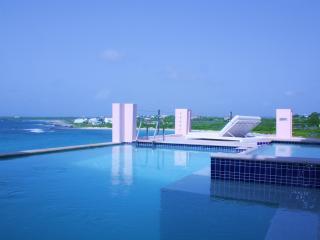 Luxury Ultimate Entertainment Villa