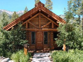 3 bed /2.5 ba- GRANITE RIDGE CABIN 7560 - Teton Village vacation rentals