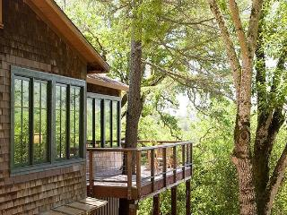Tree House - Sonoma County - Glen Ellen vacation rentals