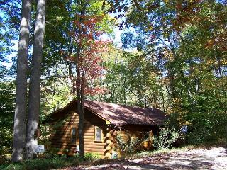 Hummingbear Lodge- The perfect vacation rental cabin in N GA for 2 couples - Cherry Log vacation rentals