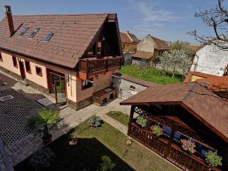 Ambient Villa 5* - Brasov vacation rentals