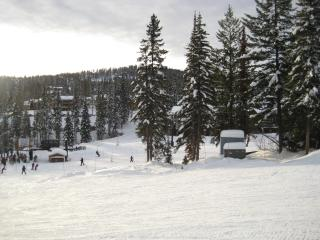 3 BR condo in Whitefish MT base of Glacier Park - Whitefish vacation rentals