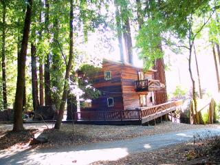 Willowhaven - Sebastopol vacation rentals