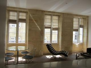 Beautiful apartment in the heart of Bordeaux - Bordeaux vacation rentals