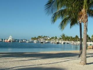 Beachfront Cayman Kai Condo- Discounted Rates! - North Side vacation rentals