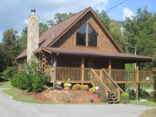 Amazing Grace-Celebrate the Smokies- FREE WI-FI!! - Sevier County vacation rentals