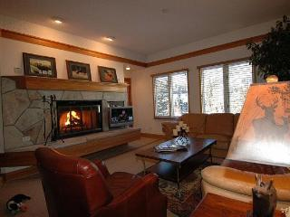 SKI IN/OUT Beaver Creek Lux 2 Bdm  60 5 Star Revws - Beaver Creek vacation rentals