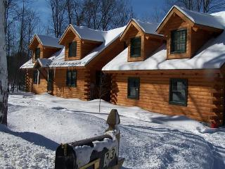 Woodstock Vermont Village Log Home Apartment - Quechee vacation rentals
