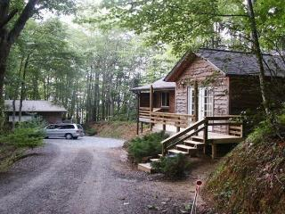 www.thecabininthewoods.com - Robbinsville vacation rentals
