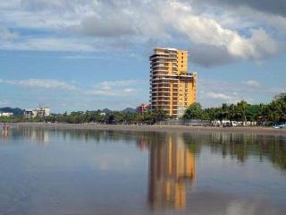 Vista Las Palmas - Luxury Condo - WiFi - Jaco vacation rentals