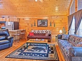 Goldie Locks&Her 3 Bears - Sevierville vacation rentals