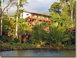 Hale Kukuna, One Bedroom Villa - Image 1 - Hana - rentals