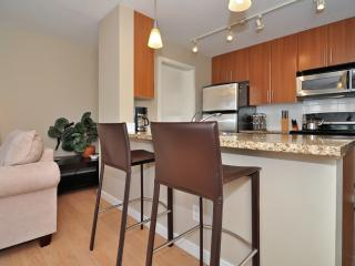 Downtown Vancouver Modern 1 Bedroom Condo Walk to Attractions and Amenities - North Vancouver vacation rentals
