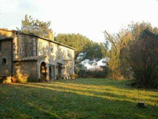 Le Piane - In the heart of the Tuscan county - Montecatini Val di Cecina vacation rentals