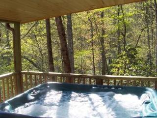 A Country Retreat at Clear Creek Cabins - Asheville vacation rentals