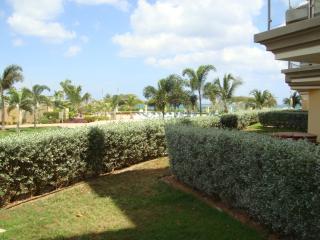 Garden Delight Studio condo - E125-1 - Eagle Beach vacation rentals