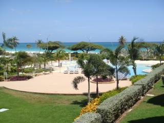 Superior Studio condo - E225-1 - Eagle Beach vacation rentals