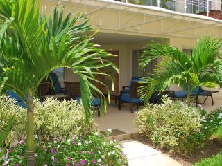 Apt 101, The Condominiums at Palm Beach, Christ Church, Barbados - Beachfront - Black Rock vacation rentals