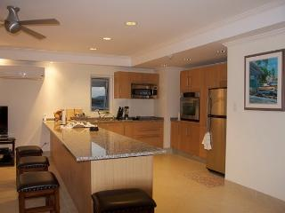 Apt 504, The Condominiums at Palm Beach, Christ Church, Barbados - Beachfront - Maxwell vacation rentals