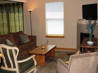 PV204 Pleasing Condo w/Fireplace, Clubhouse, Garage, Great Views - Silverthorne vacation rentals