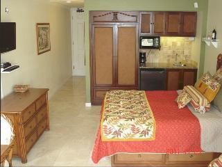 $84-$104-Oceanfront Resort/Oceanview Units244/256 - Kapaa vacation rentals
