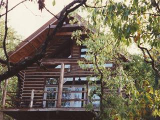Cherokee Mountain Log Cabin Resort - Eureka Springs vacation rentals
