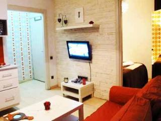 1+1 beyoglu apartment  (803) - Istanbul vacation rentals
