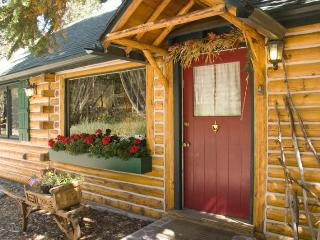 Enchanting Mountain Cabin Wooded Property w/ WiFi - Allenspark vacation rentals