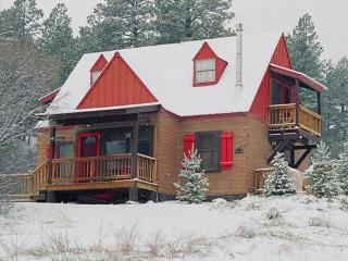 Acorn Cottage Log Cabin, Great Views, Ski, Hot Tub - Pagosa Springs vacation rentals