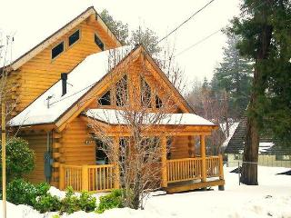 Newly Build wood Log Cabin Minutes to Lake Special - Apple Valley vacation rentals