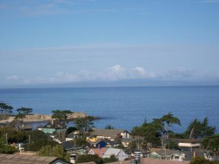Amazing Ocean Views, walk to Canny Row - Pacific Grove vacation rentals
