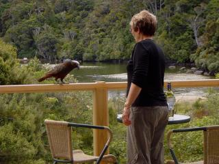 Deep Bay Apartment - beach bush and native birds. - Stewart Island vacation rentals
