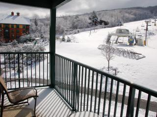 Mountain Creek Two Bedroom Condo (at Appalachian) - Vernon vacation rentals