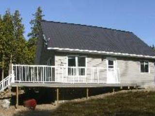 300' lakefront, 50+ acres, Sat TV, Family Friendly - Spring Bay vacation rentals