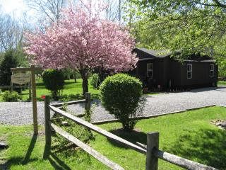 SOUTHERN OHIO'S WOODLAND COTTAGE you've dreamed of - Chillicothe vacation rentals