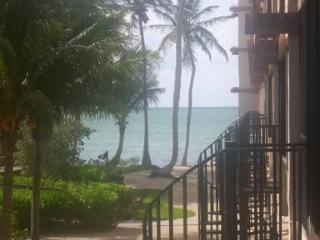Ocenfront condo with pool and Huge T dock - Islamorada vacation rentals