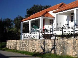 Termas-da-azenha: charming familyhouse Oliveira - Beiras vacation rentals