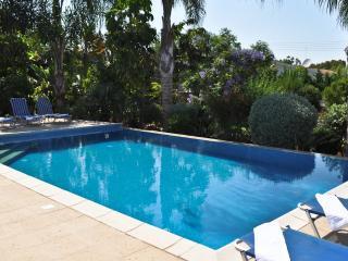 Oceanview Villa 022 - sleeps 10 spacious gardens - Protaras vacation rentals