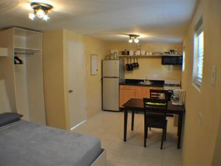 Studio Apartment stone throw from everything Aruba - Paradera vacation rentals