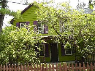 Woodstock Village  Serene &  Spacious - Woodstock vacation rentals