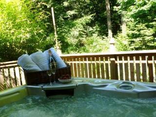 Island Charmer!  3 bedroom, 2 bath with Hot Tub, Sauna & Fire Pit. - Friday Harbor vacation rentals