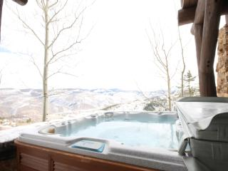 7 bedroom luxury vacation home rental - Beaver Creek vacation rentals