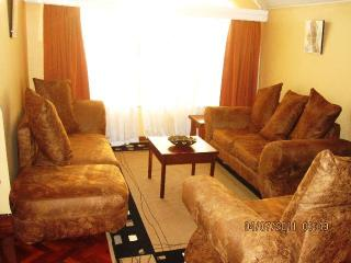 THE JUNCTION MALL APARTMENT NO 2 - Nairobi vacation rentals
