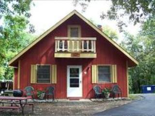 Foxfire - 3 Bed/2 Bath - Silver Dollar City 1 Mile - Branson vacation rentals
