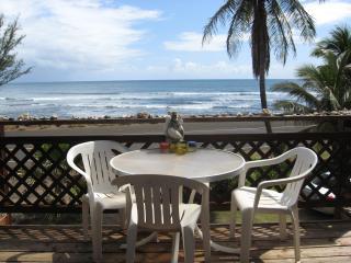 SUNNY WESTSIDE OCEANFRONT - Kekaha vacation rentals