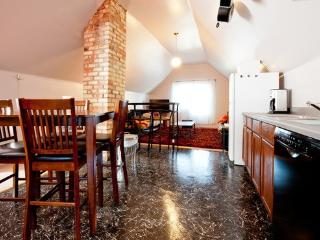 S&J #1#3#4#10#11 Unique Loft 10' Vault Dtown/UofM! - Minnesota vacation rentals