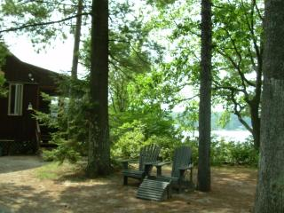 Private Island - Crystal-Clear Sandy-Bottomed Lake - Sanbornville vacation rentals